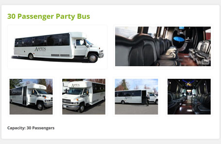 Aspen-Limo-Tours-Web-Design-small-02