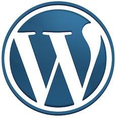Custom WordPress Website Themes
